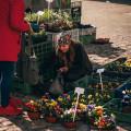 Markets on Piaristik square in České Budějovice. . . . . . . . #vltavariver #vltavariverig #budejovicko #cbhl …