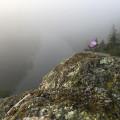 Vantage point Baba is hidden in woods. Such a magic place!😍 . . . . . . . #vltavariver #vltavariverig …