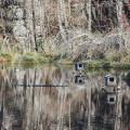 Wetlands of upper Liběchovky 🙂 . . . . . . . . #vltavariver #vltavariverig #section6ig #centralbohemia …