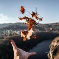 Autumn is here! Vantage point Bednář 😍 . . . . . . . . #vltavariver #vltavariverig #centralbohemia #posazavi …